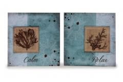 Calm & Relax (set of 2)